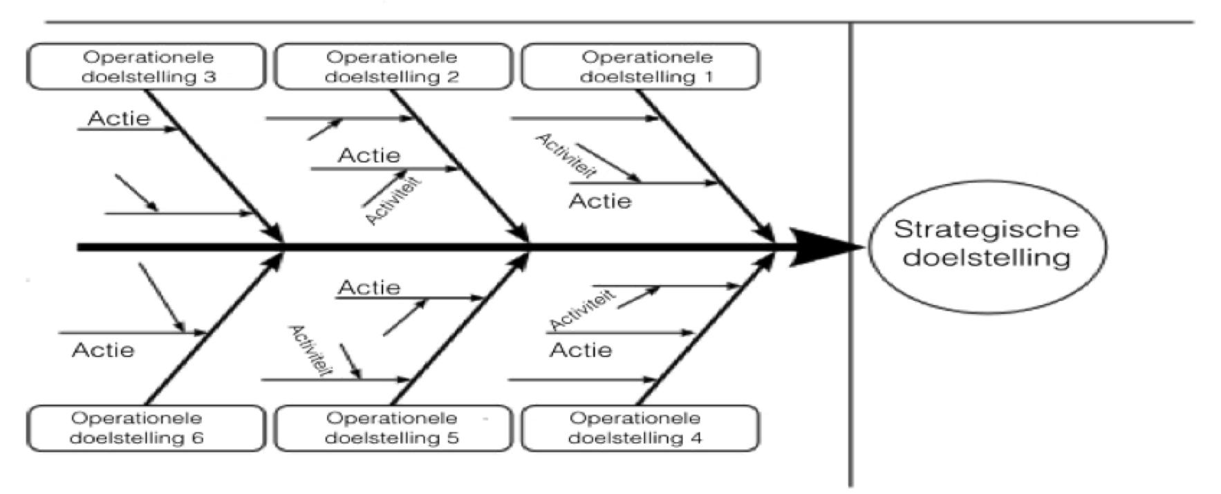 Visgraatdiagram Ishikawadiagram